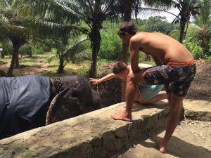 elefántos